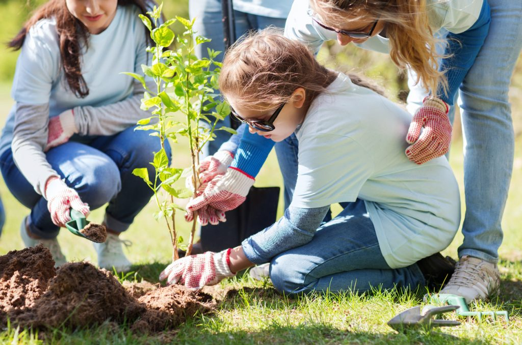 Adolescent girl with ADHD planting in a garden with her family in the sunshine